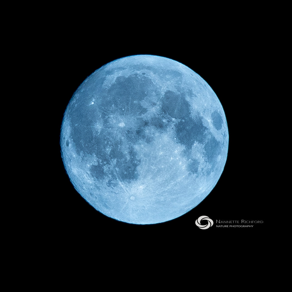 January 31 blue moon