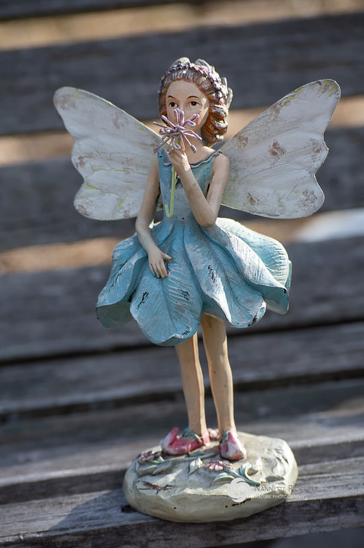 Garden Fairy on Bench