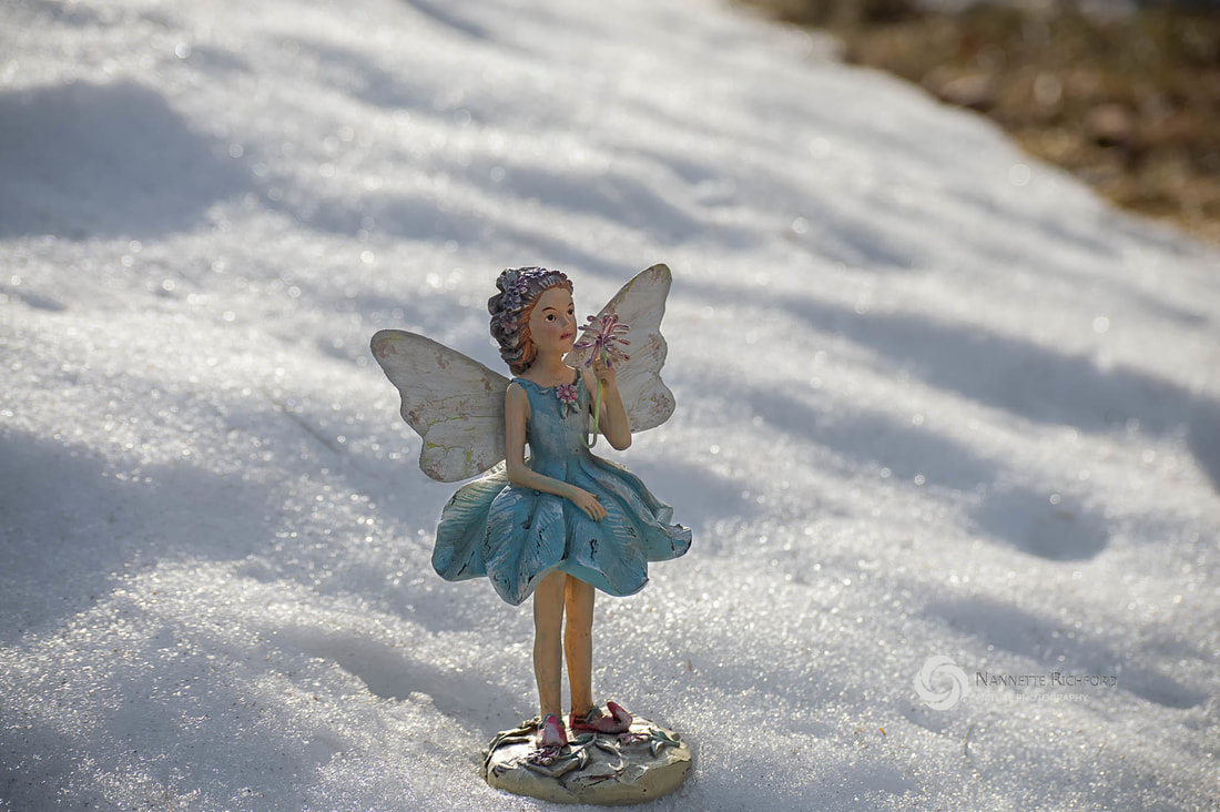 Garden Fairy in Snow